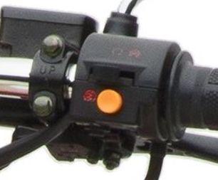 Not-Schalter Armatur Retro Star rechts ZNEN